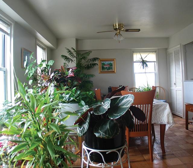 Apartments For Rent In Elizabeth Nj: Fairmount Towers Apartments For Rent In Elizabeth, NJ $250